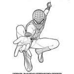 Спайдермен плете павутину